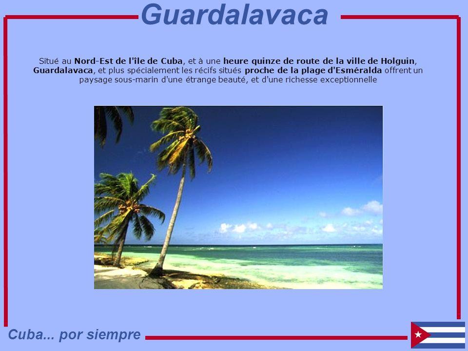 Guardalavaca Cuba... por siempre
