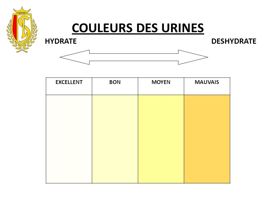 COULEURS DES URINES HYDRATE DESHYDRATE.
