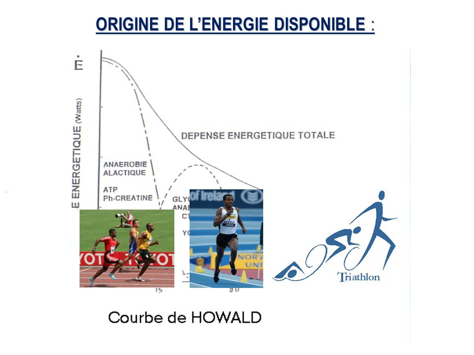 ORIGINE DE L'ENERGIE DISPONIBLE :