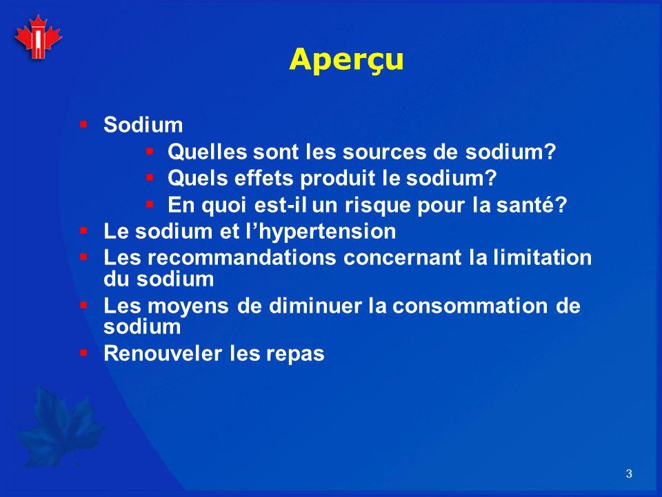 Aperçu Sodium Quelles sont les sources de sodium