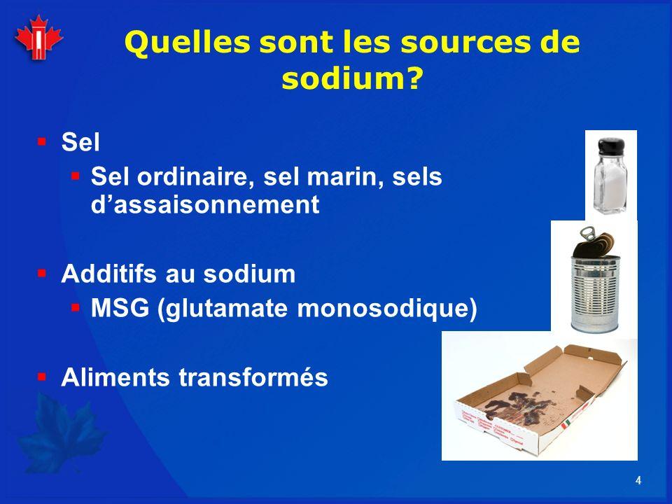 Quelles sont les sources de sodium