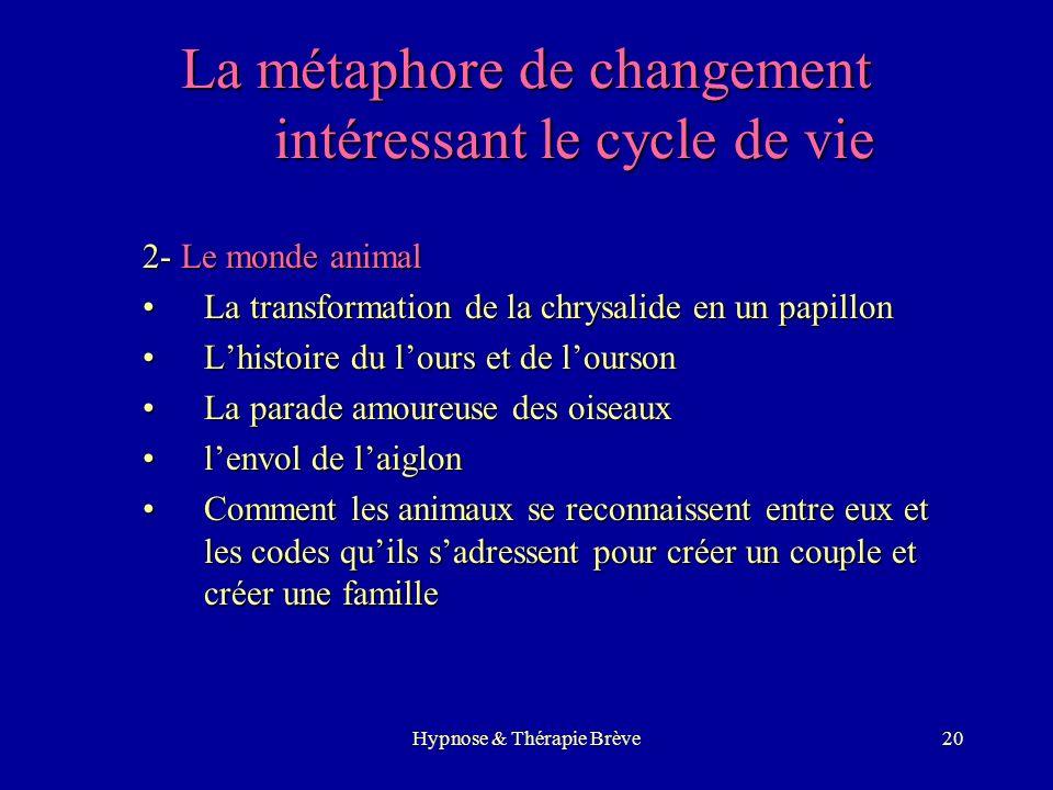 La métaphore de changement intéressant le cycle de vie