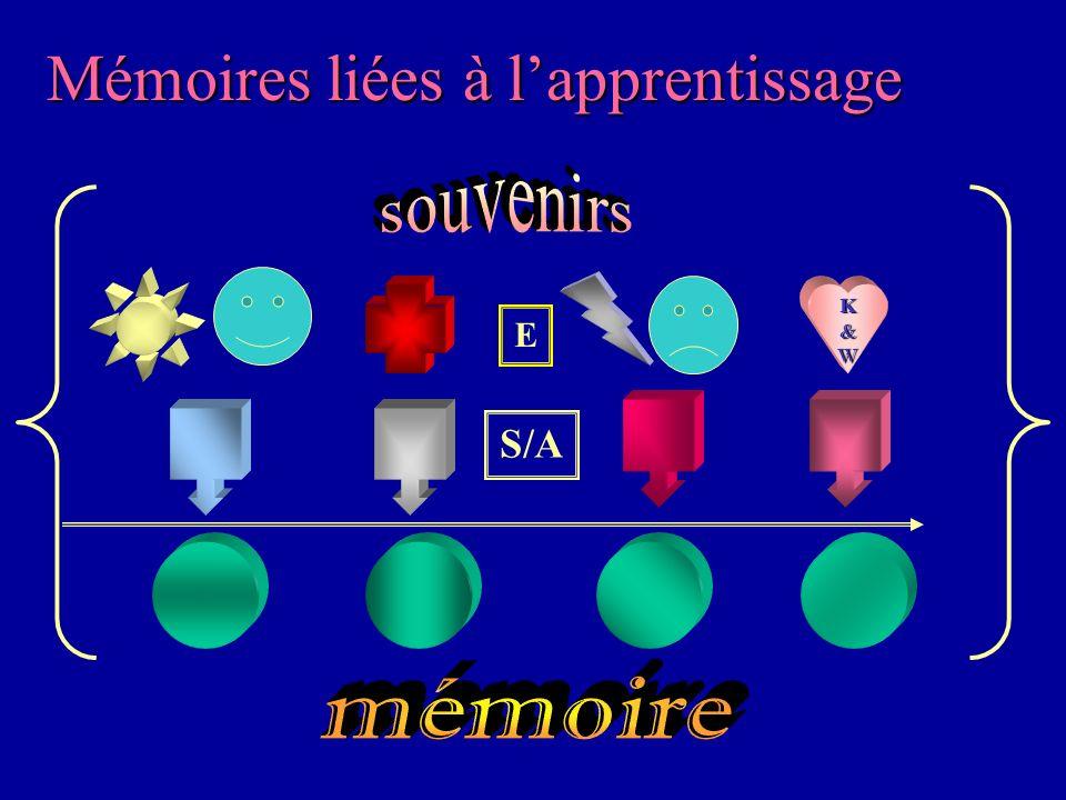 Mémoires liées à l'apprentissage