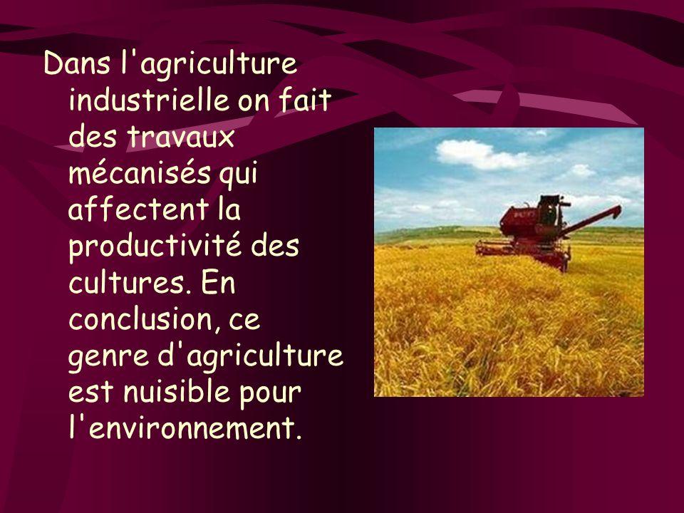 Dans l agriculture industrielle on fait des travaux mécanisés qui affectent la productivité des cultures.