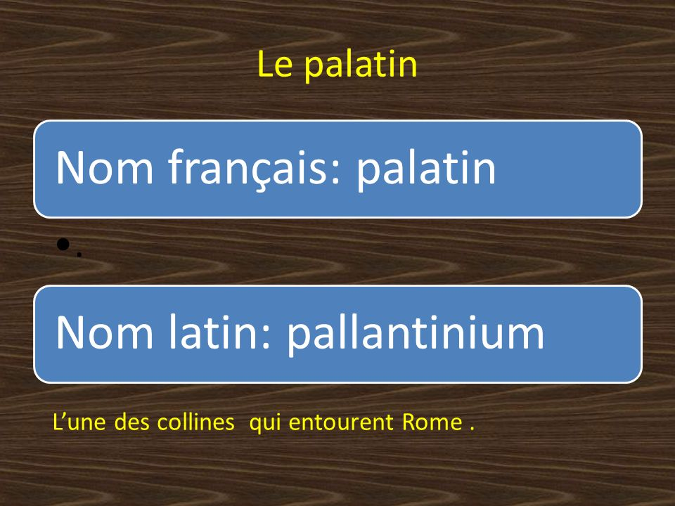 Nom français: palatin Le palatin .