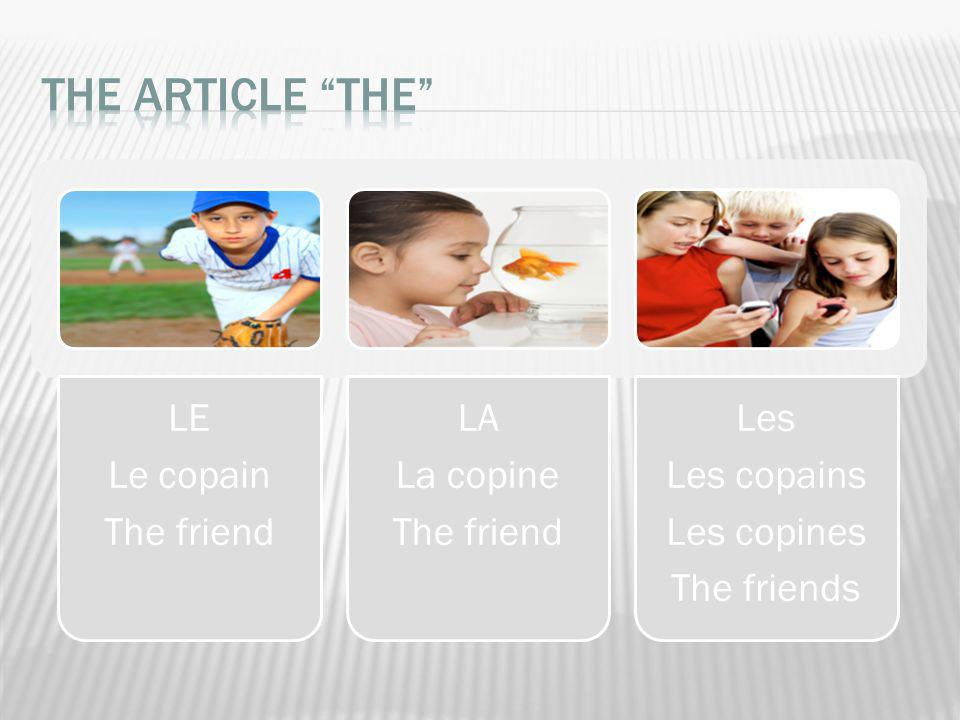 The article THE The friend Le copain LE La copine LA Les copines