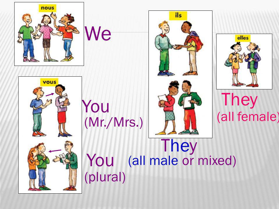 We They You They You (Mr./Mrs.) (all male or mixed) (plural)