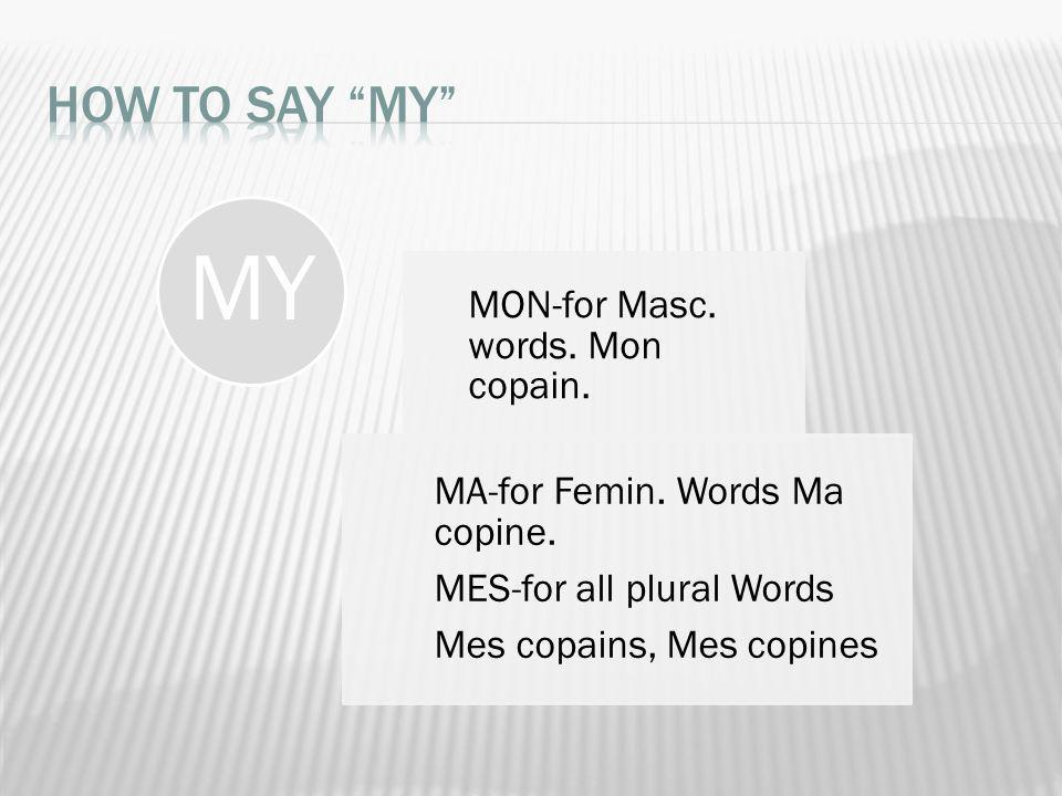 MY How to say MY MON-for Masc. words. Mon copain.