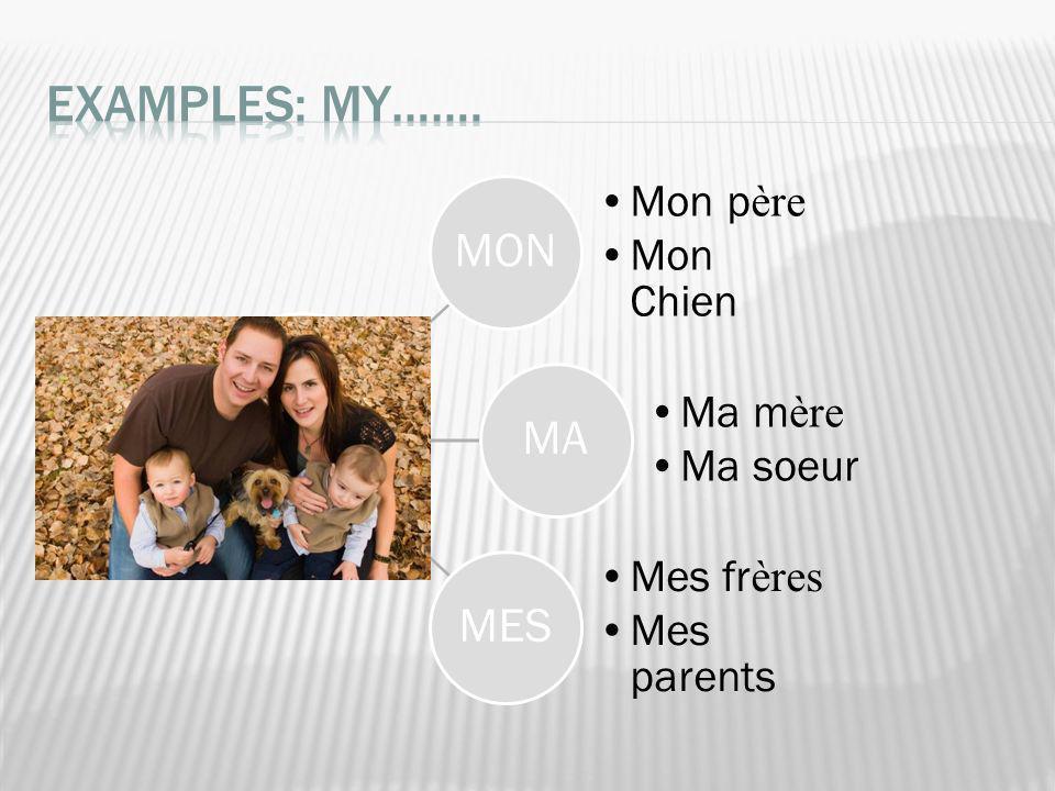 Examples: MY……. MON MA MES Mon père Mon Chien Ma mère Ma soeur