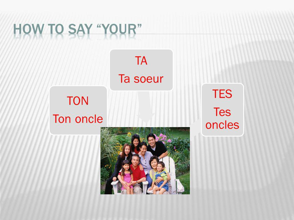 How to say YOUR TON Ton oncle TA Ta soeur TES Tes oncles