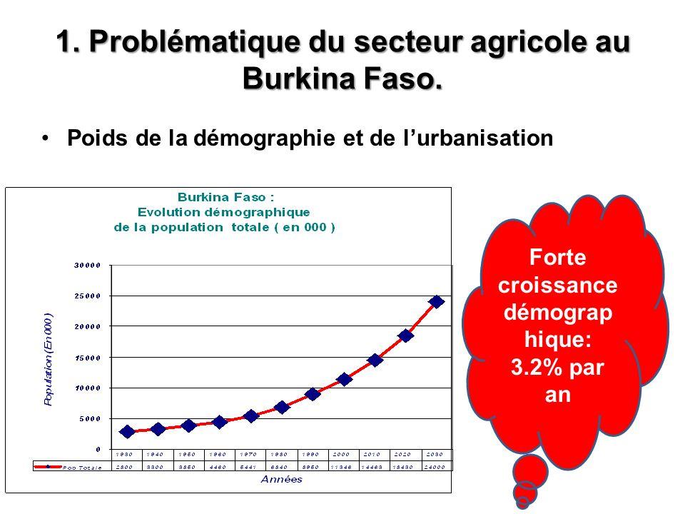 1. Problématique du secteur agricole au Burkina Faso.