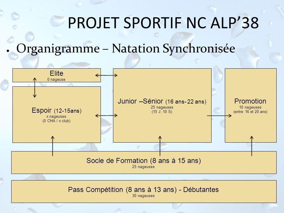 PROJET SPORTIF NC ALP'38 Organigramme – Natation Synchronisée Elite