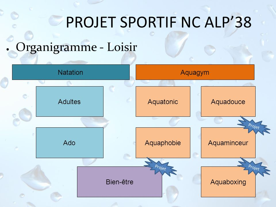 PROJET SPORTIF NC ALP'38 Organigramme - Loisir Natation Aquagym