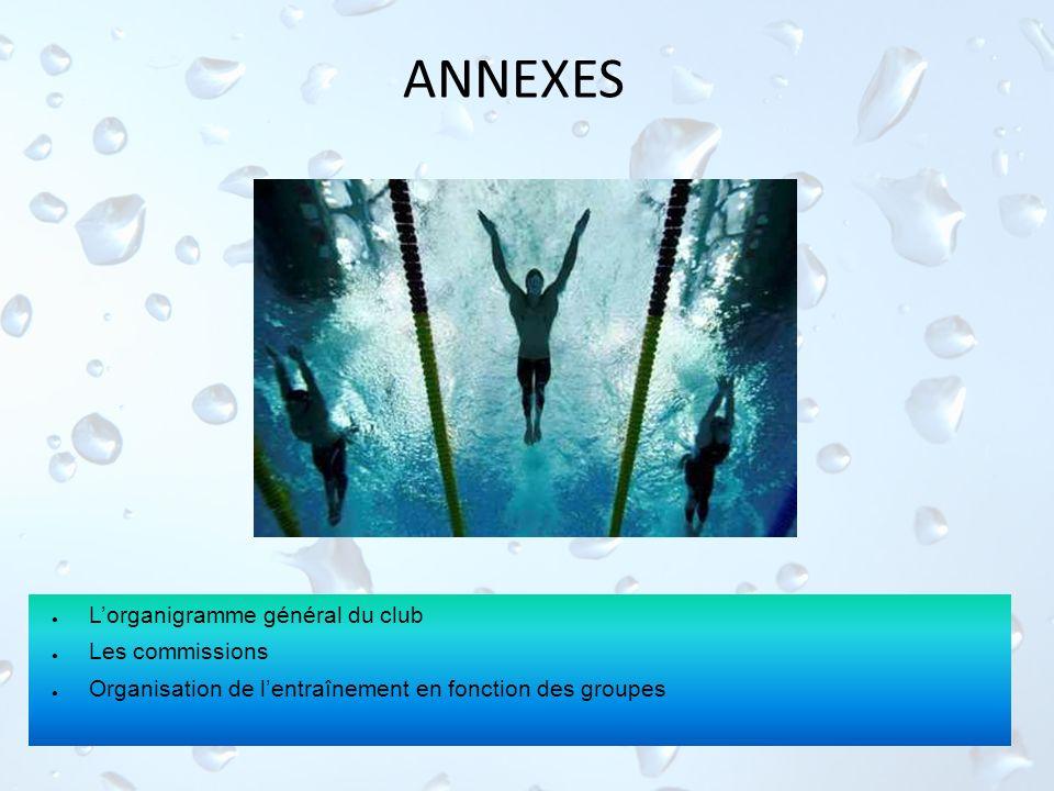ANNEXES L'organigramme général du club Les commissions