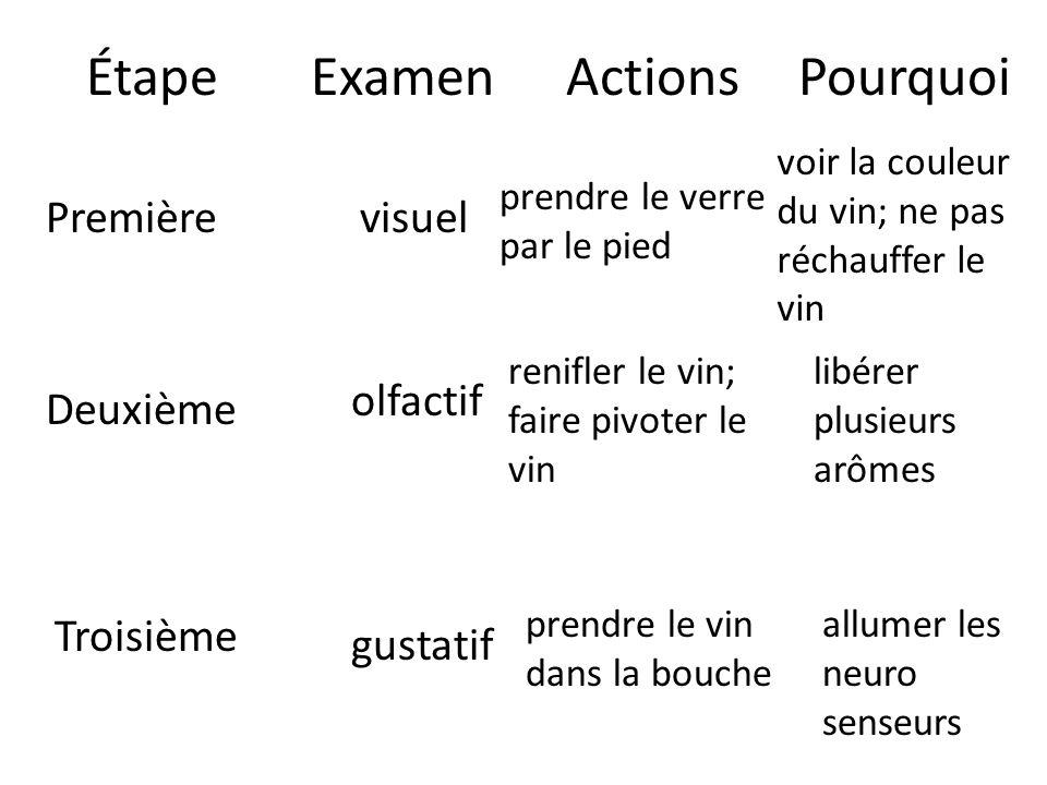 Étape Examen Actions Pourquoi Première visuel olfactif Deuxième