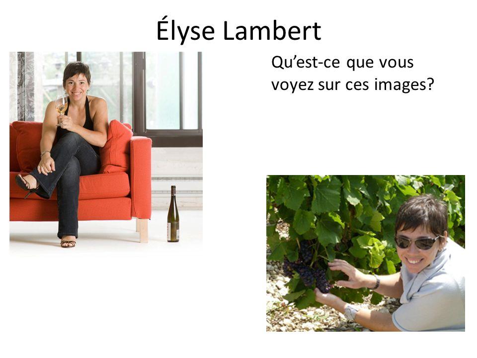 Élyse Lambert Qu'est-ce que vous voyez sur ces images