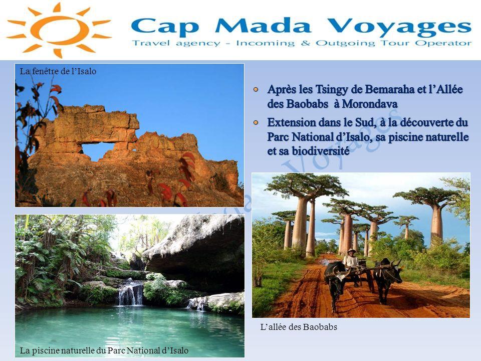 Après les Tsingy de Bemaraha et l'Allée des Baobabs à Morondava