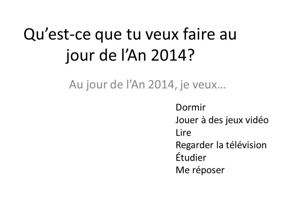 Qu'est-ce que tu veux faire au jour de l'An 2014