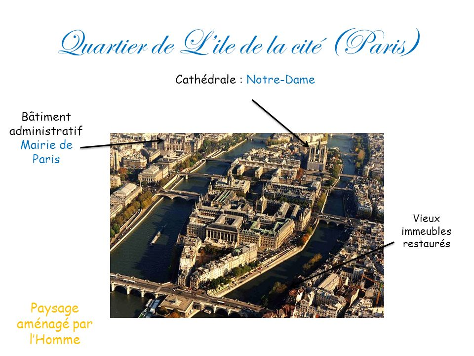 Quartier de L'ile de la cité (Paris)