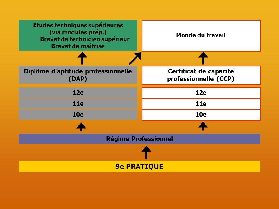 9e PRATIQUE 12e 11e 10e Certificat de capacité professionnelle (CCP)