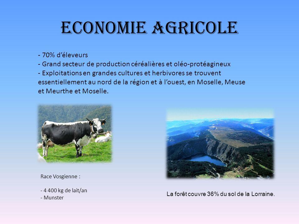 Economie Agricole - 70% d'éleveurs