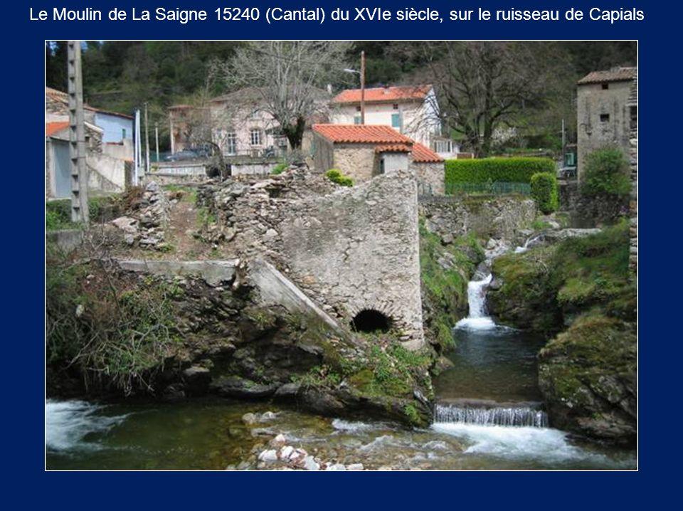 Le Moulin de La Saigne 15240 (Cantal) du XVIe siècle, sur le ruisseau de Capials