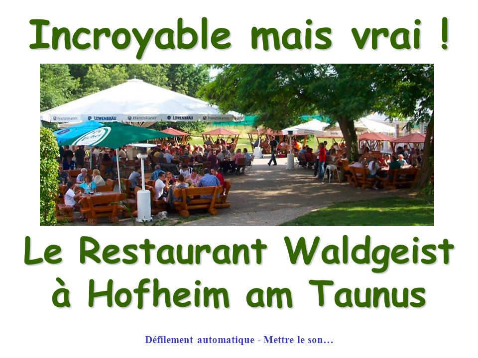 Le Restaurant Waldgeist Défilement automatique - Mettre le son…