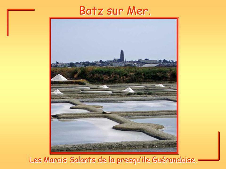 Les Marais Salants de la presqu'ile Guérandaise.