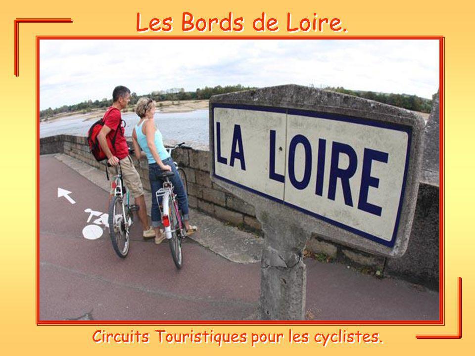 Circuits Touristiques pour les cyclistes.