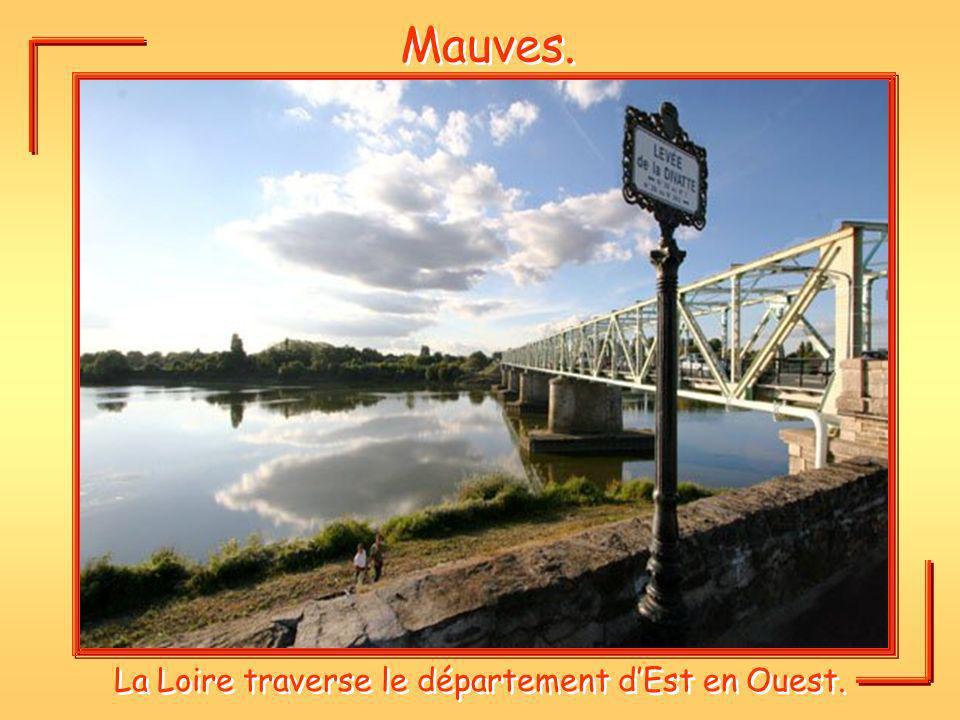 La Loire traverse le département d'Est en Ouest.