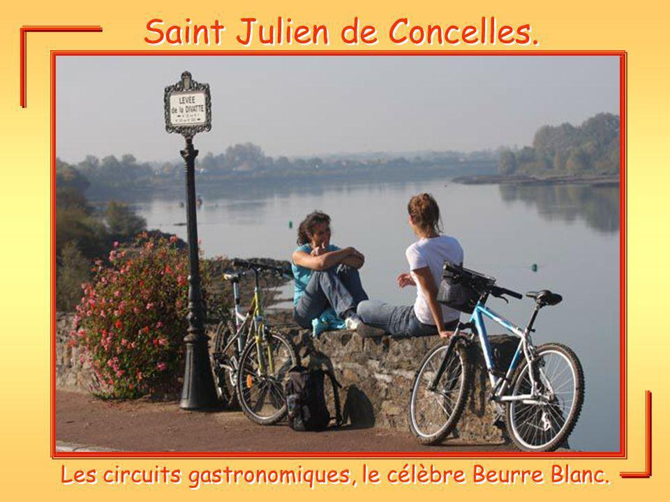 Saint Julien de Concelles.