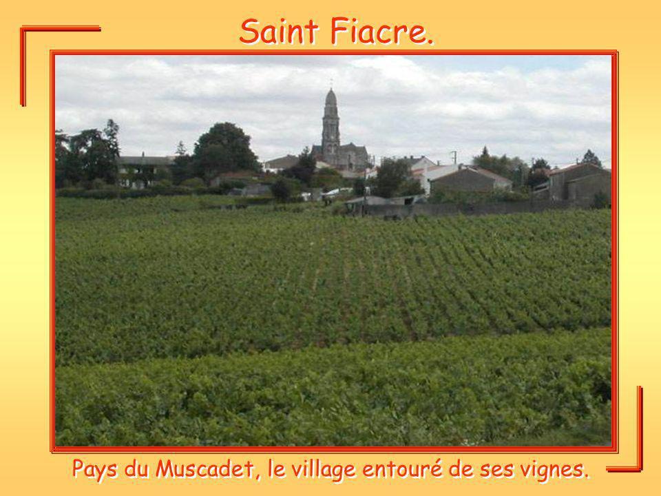 Pays du Muscadet, le village entouré de ses vignes.