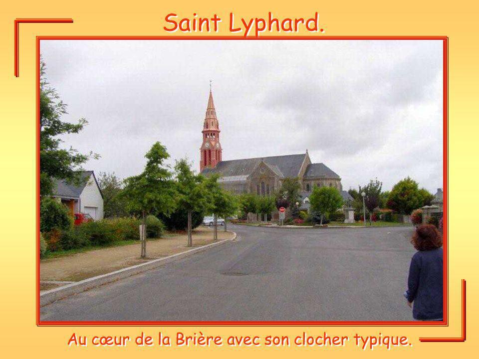 Au cœur de la Brière avec son clocher typique.