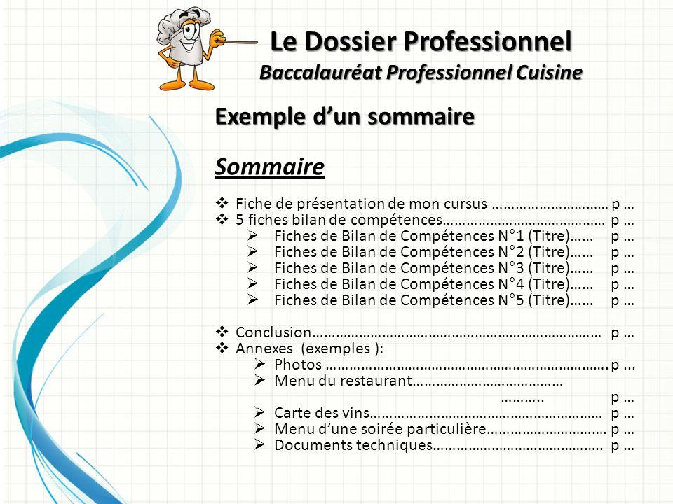 Le dossier professionnel baccalaur at professionnel - Livre technique cuisine professionnel ...