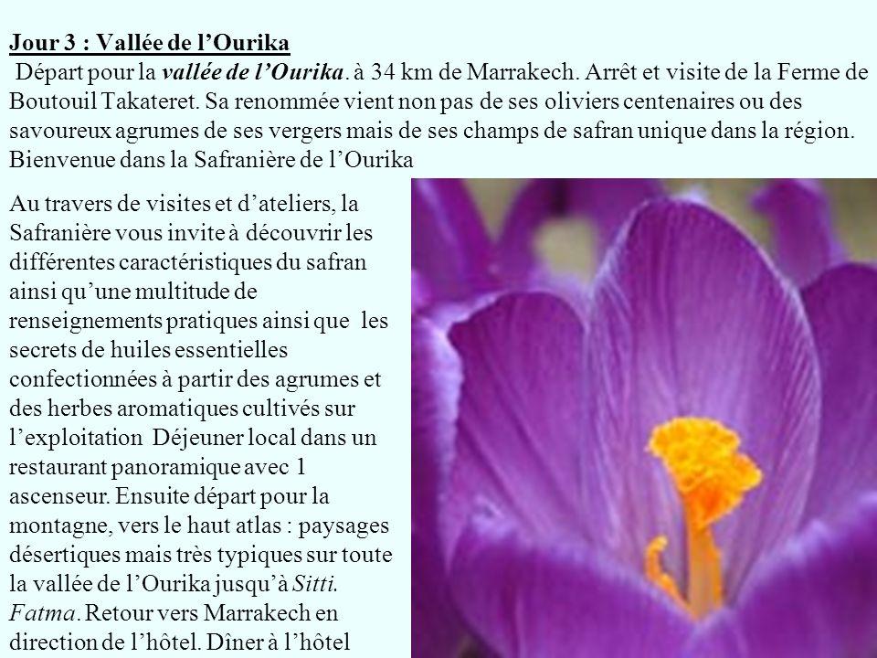 Jour 3 : Vallée de l'Ourika Départ pour la vallée de l'Ourika