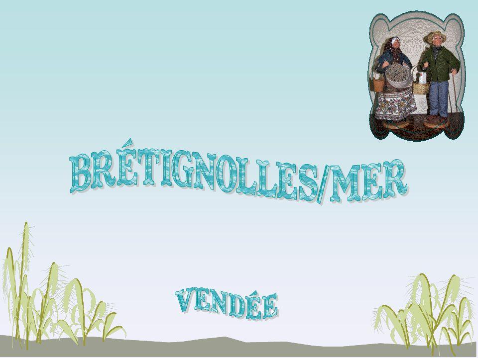 BRéTIGNOLLES/MER vendée