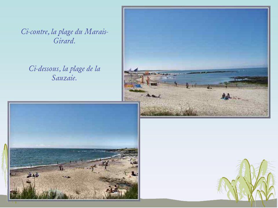 Ci-contre, la plage du Marais-Girard.