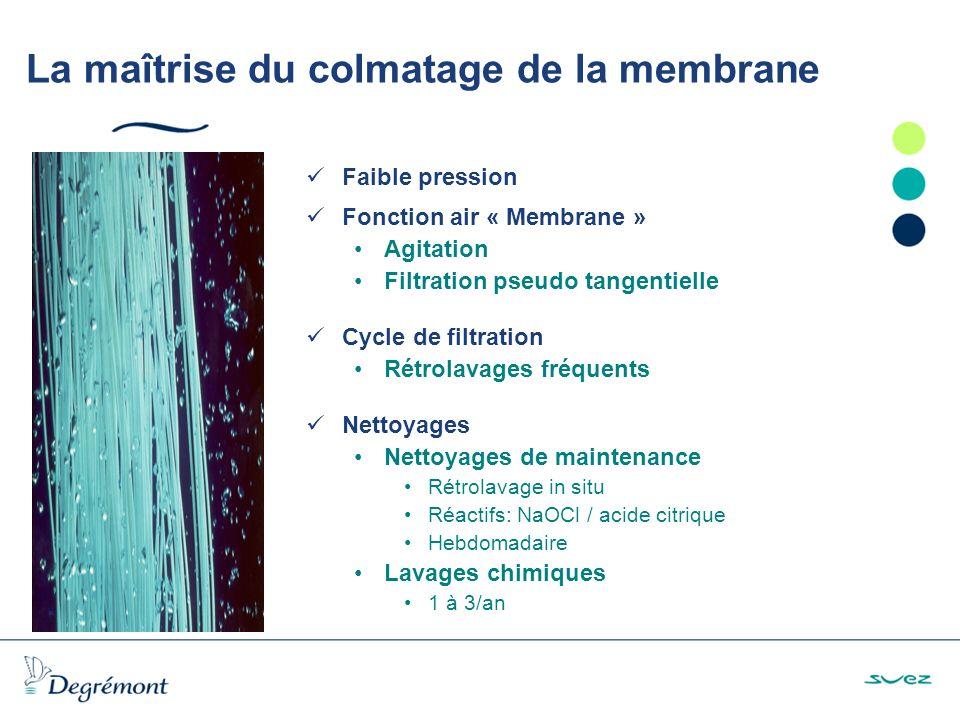 La maîtrise du colmatage de la membrane