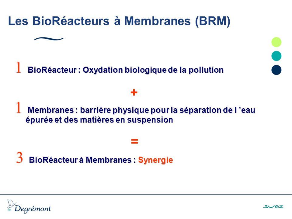Les BioRéacteurs à Membranes (BRM)