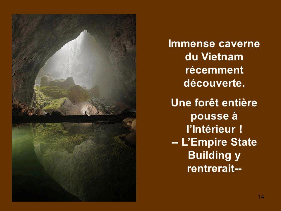 Immense caverne du Vietnam récemment découverte.