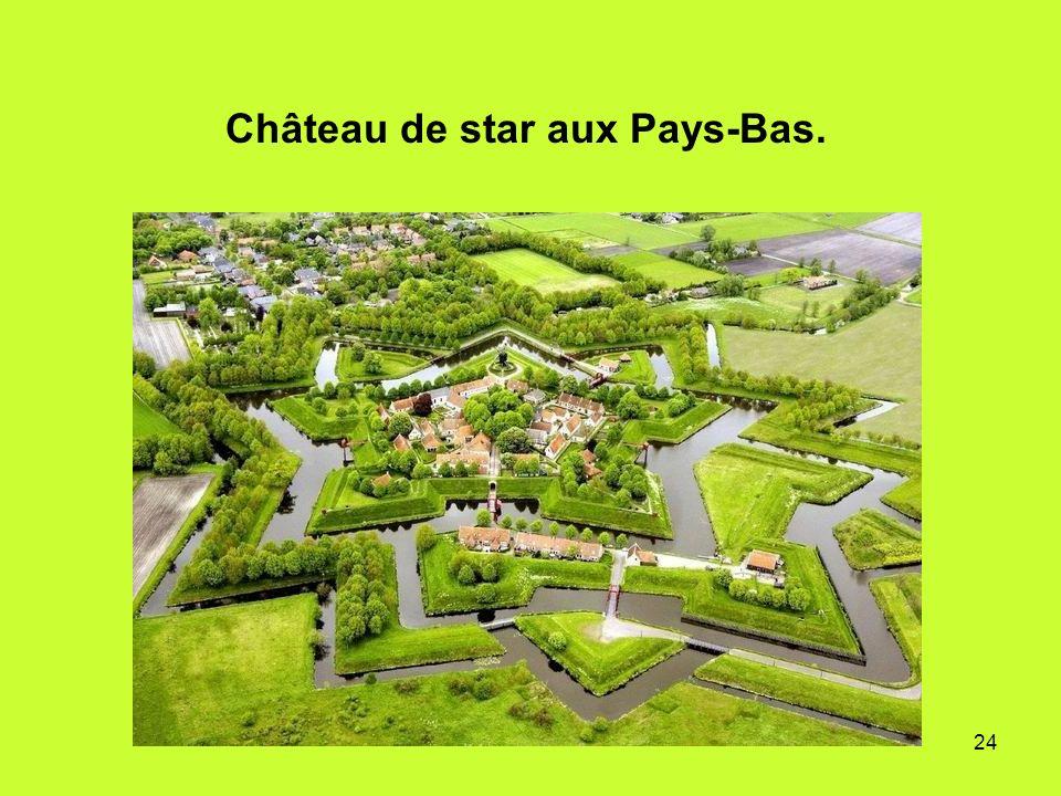 Château de star aux Pays-Bas.