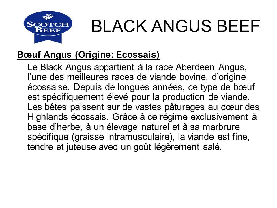 BLACK ANGUS BEEF Bœuf Angus (Origine: Ecossais)