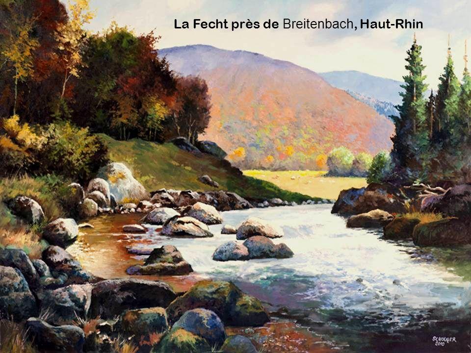 La Fecht près de Breitenbach, Haut-Rhin