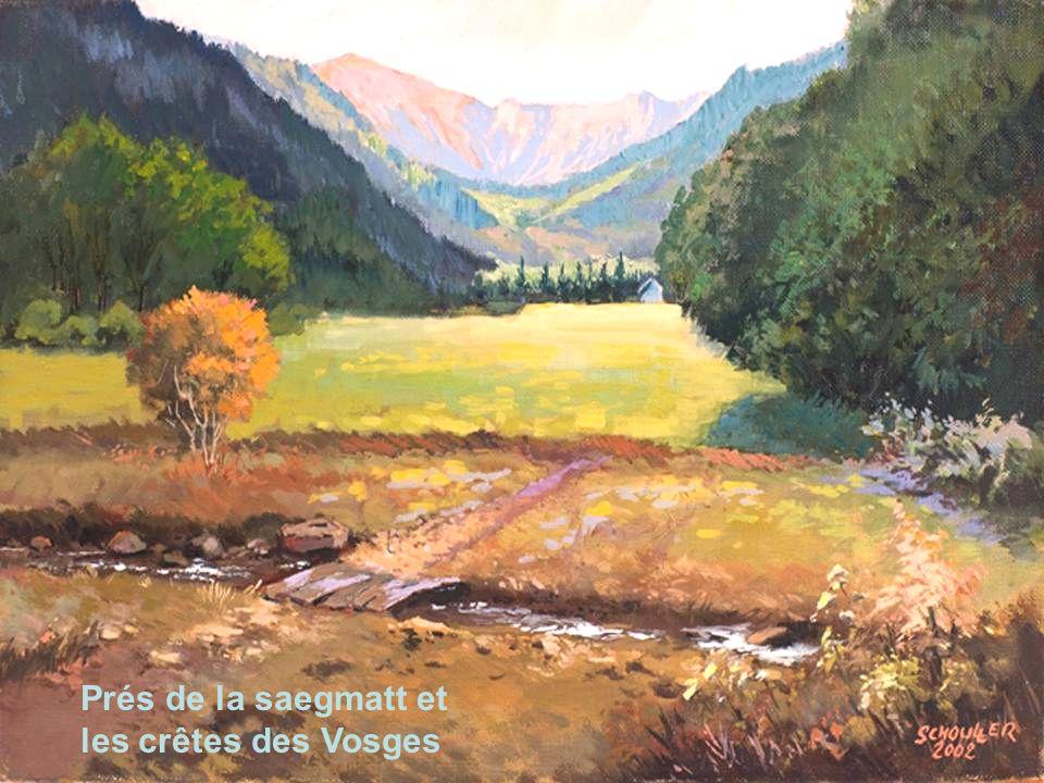Prés de la saegmatt et les crêtes des Vosges