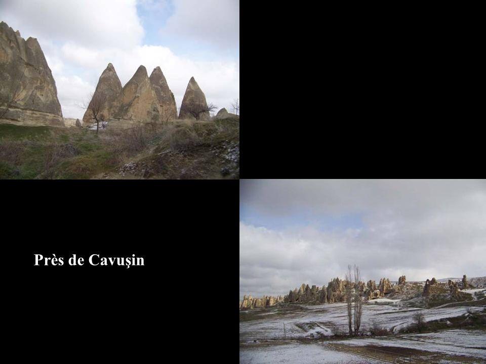 Près de Cavuşin