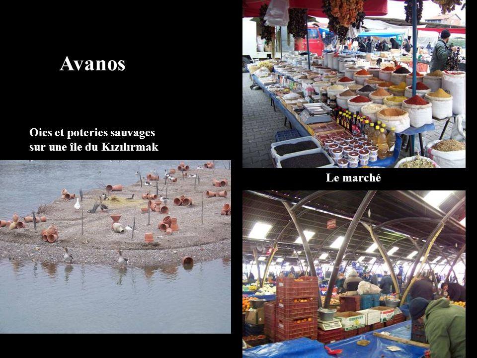 Avanos Oies et poteries sauvages sur une île du Kızılırmak Le marché