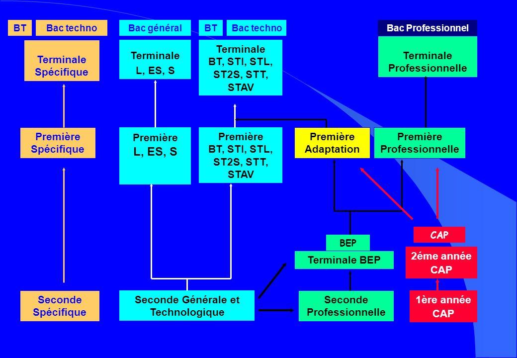 Terminale Professionnelle Terminale Spécifique Terminale L, ES, S