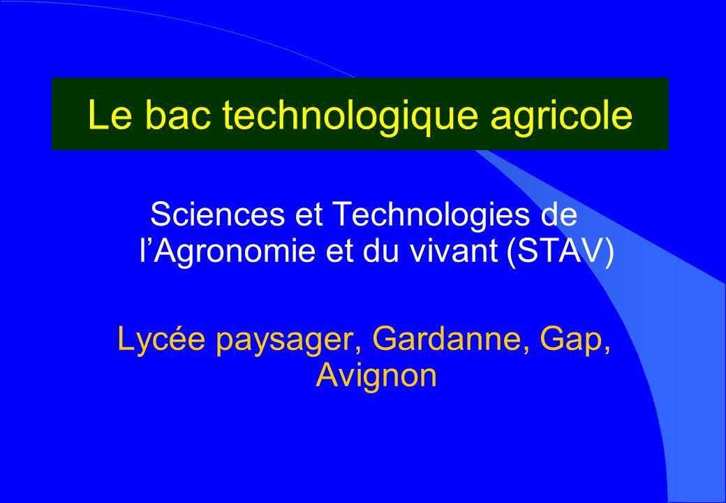 Le bac technologique agricole