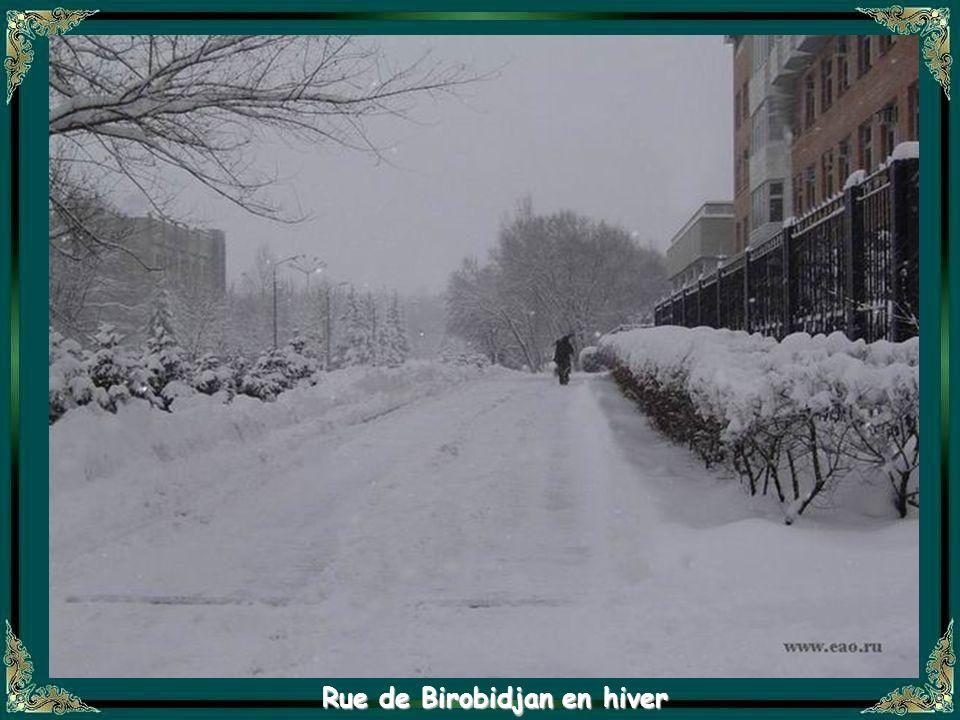 Rue de Birobidjan en hiver