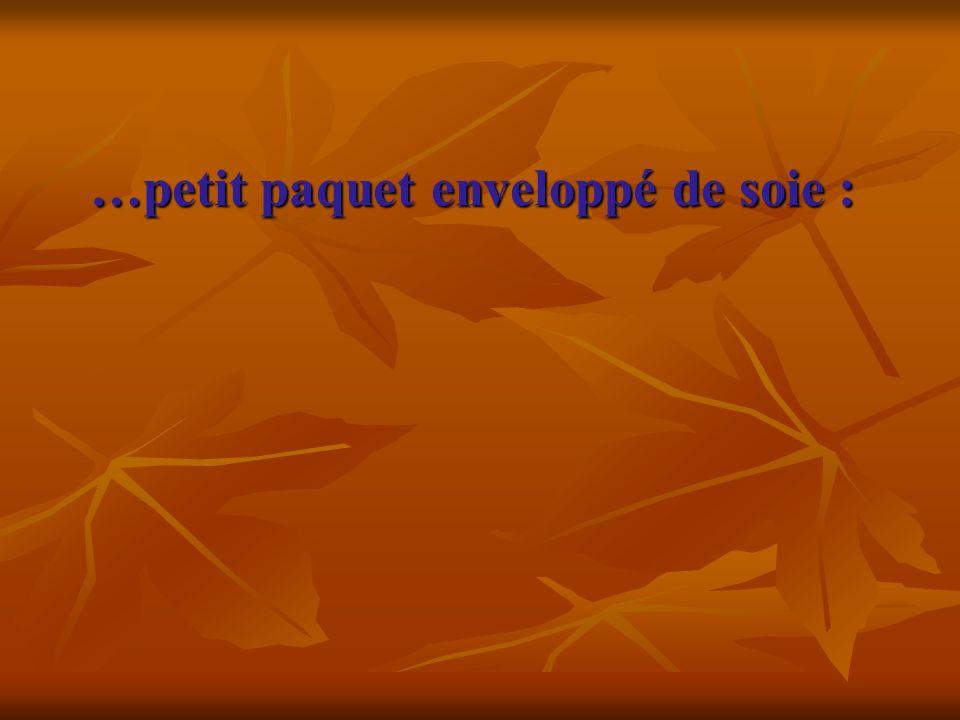 …petit paquet enveloppé de soie :